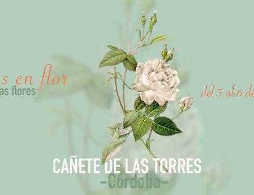 """1º Festival """"Calles en flor"""" en Cañete de las Torres"""