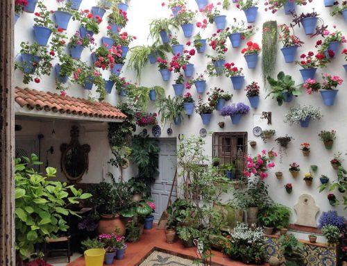 Patio Juan Rufo, el patio de la armonía