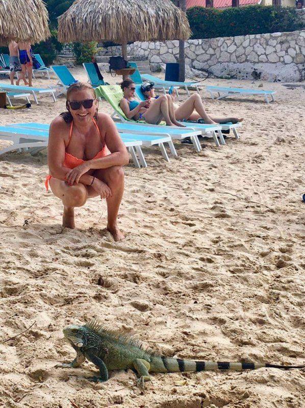 Una iguana en Curaçao