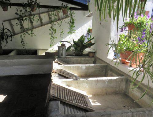 Los patios de Córdoba, un gran legado