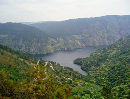 A Ribeira Sacra, los fiordos gallegos