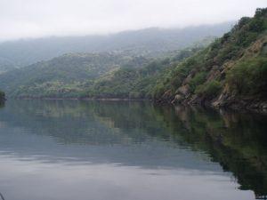 Navegando por el río Sil