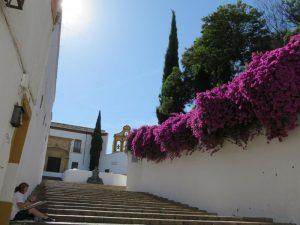 Escalinata del Bailio en Córdoba