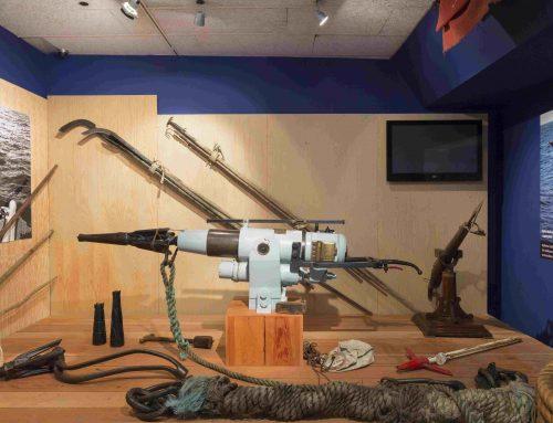 Museo Massó en Bueu – Conservas, ballenas y mucha historia