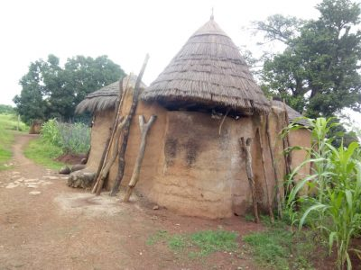 Viviendas de los Tata Somba