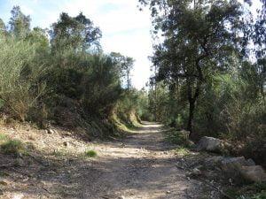 ruta de los muiños do Folón e do Picón