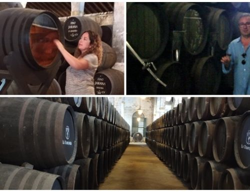 Viajando con el vino de Jerez