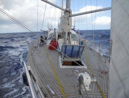 Navegando en el Trotamar