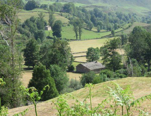 El valle del Pas y sus cabañas pasiegas. Cantabria.
