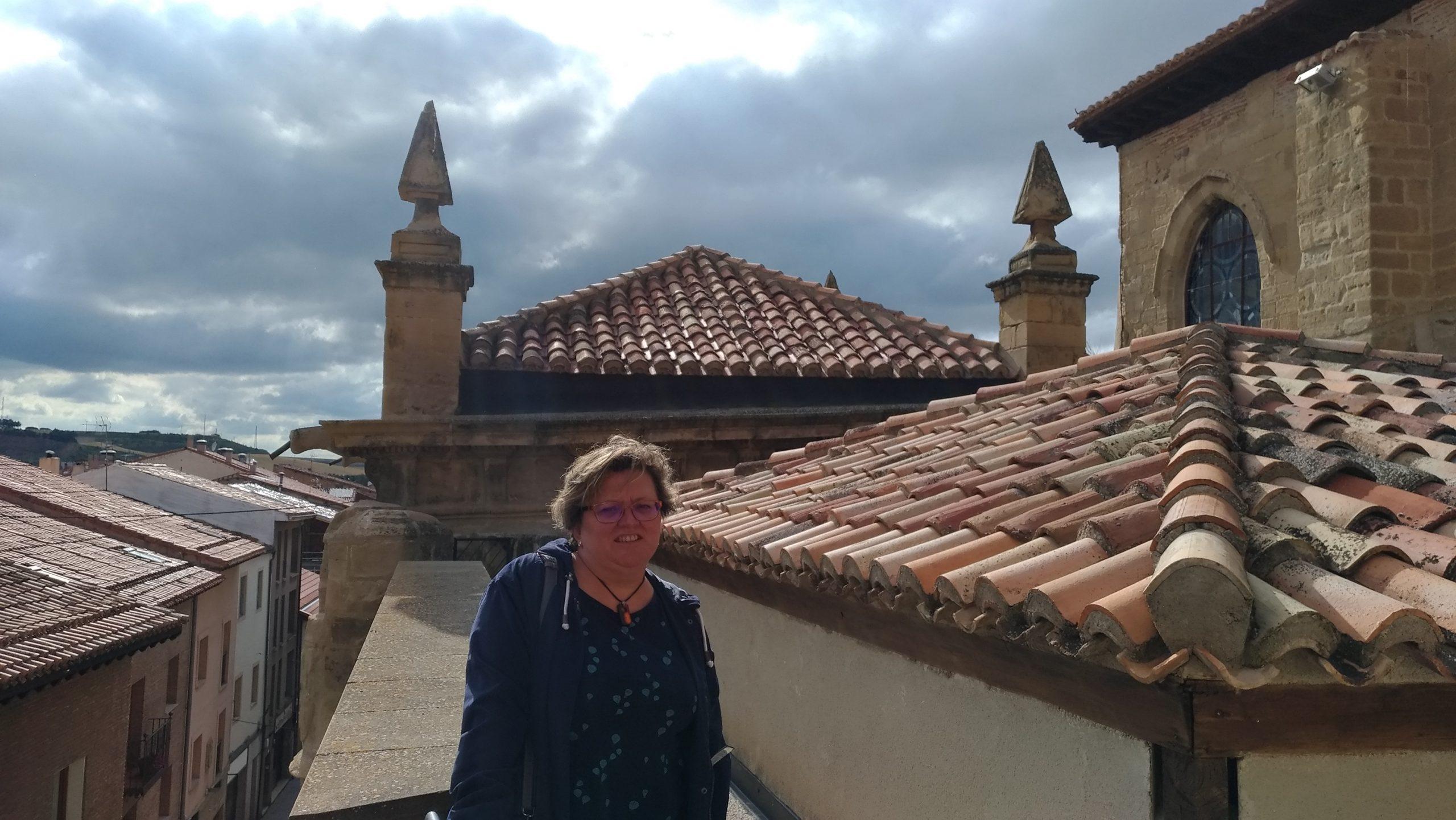 Cubiertas de la Catedral de Santo Domingo de la Calzada
