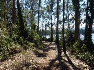 Senda costera peatonal entre Castropol y Figueras