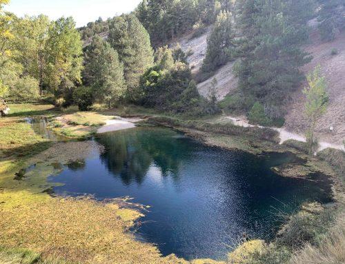 Senderismo por el Sabinar y la Fuentona en Calatañazor