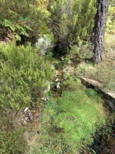 Duruelo de la Sierra y la Laguna Negra
