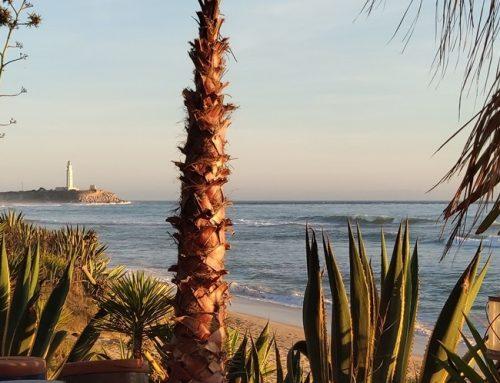Conil de la Frontera: playas y faros cercanos