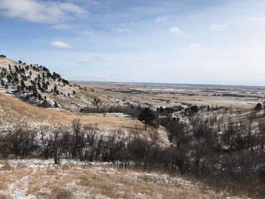 Contemplando el Bear Butte State Park