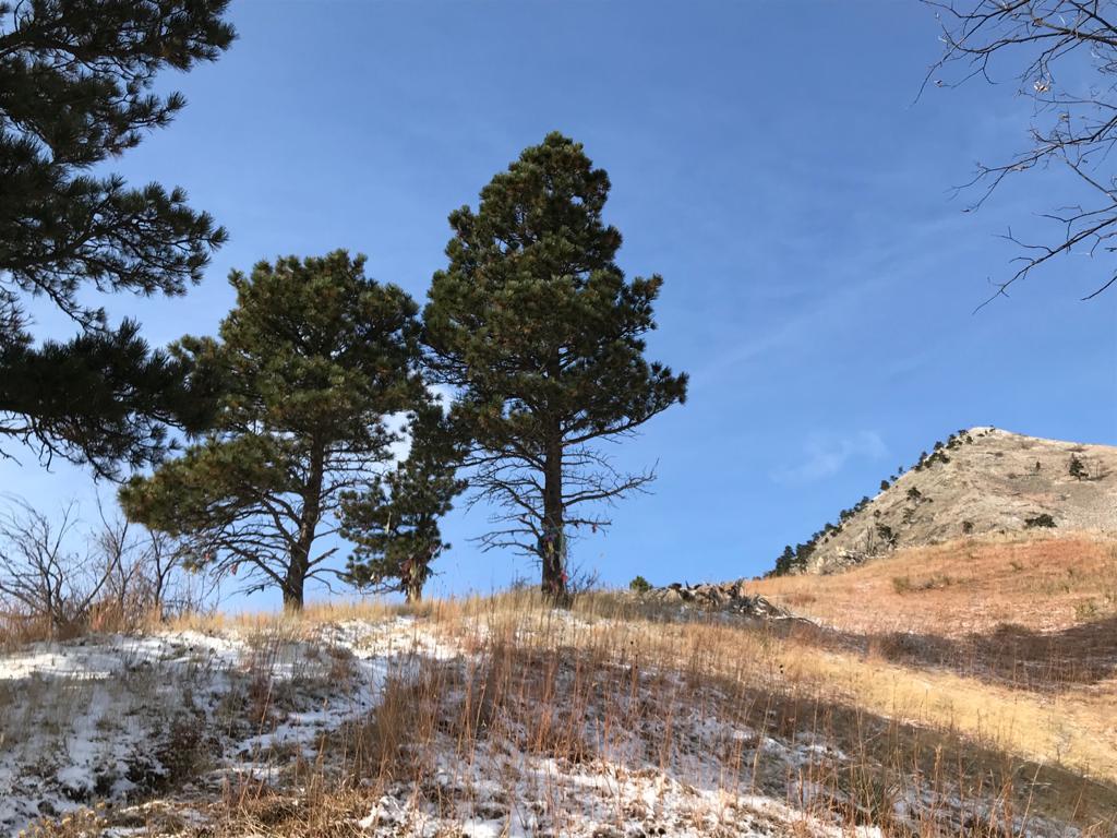 En Bear Butte State Park