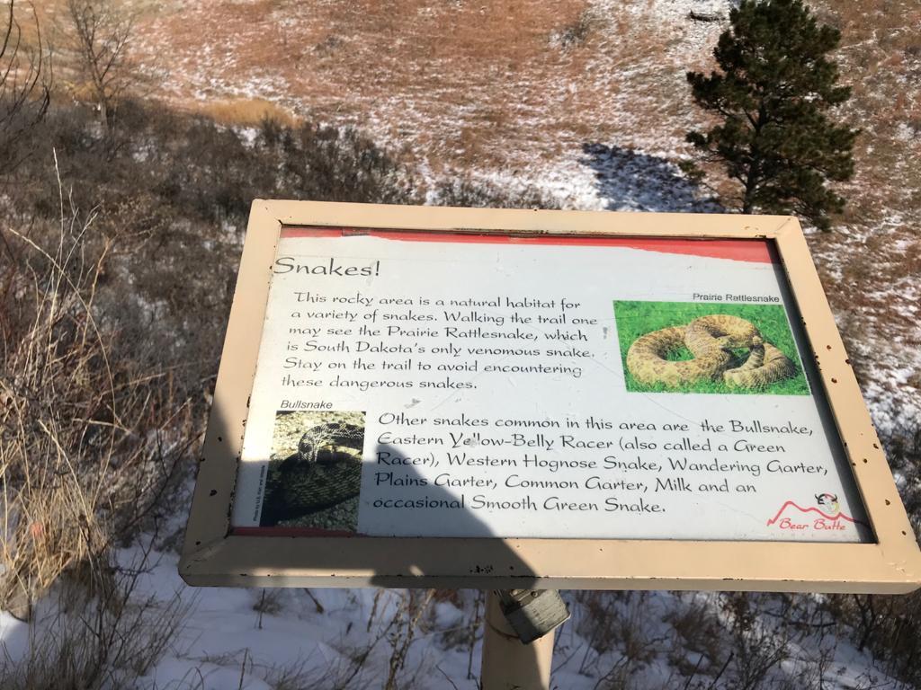 Serpientes en Bear Butte State Park