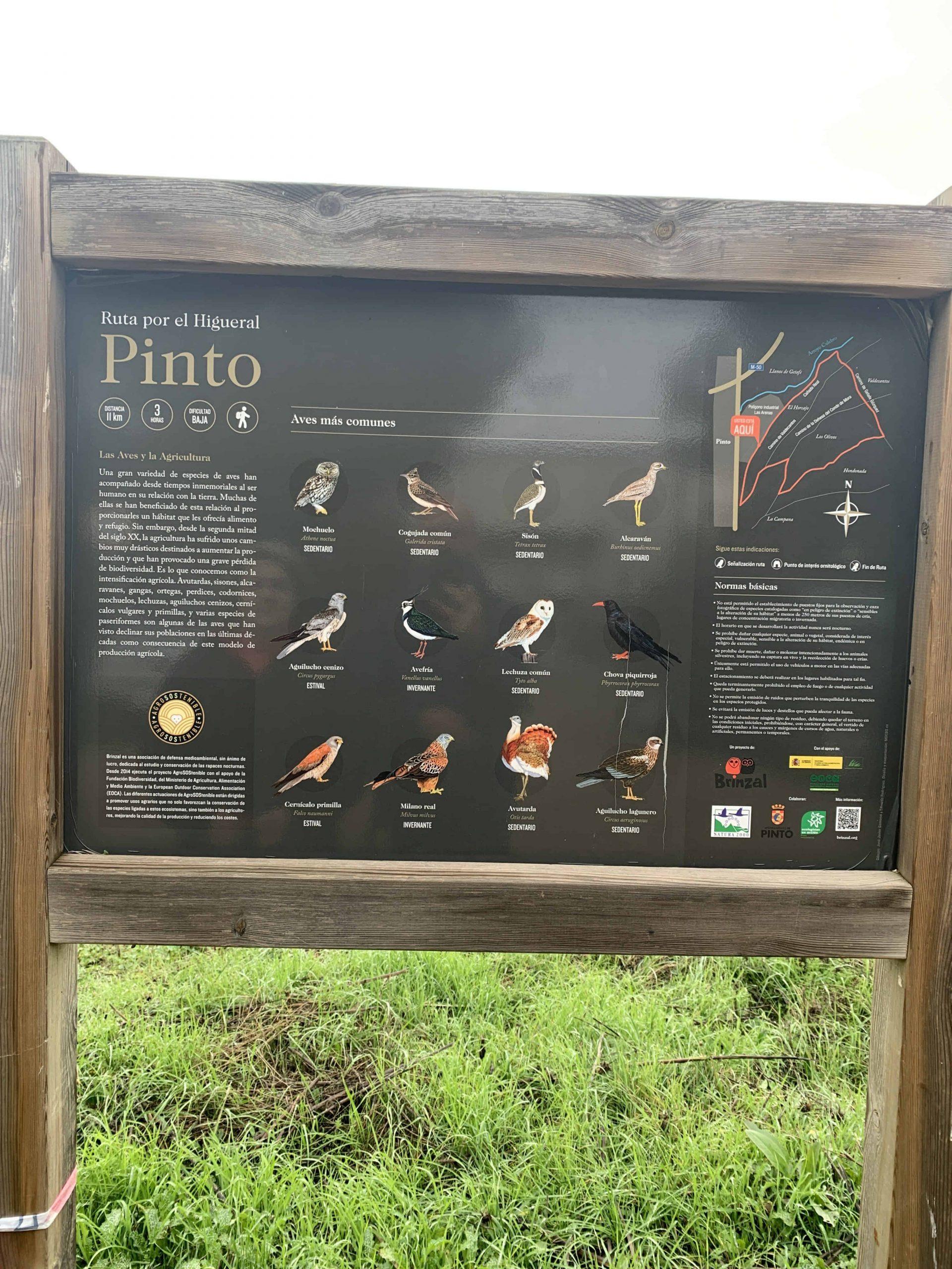 Los búnkeres de Pinto en Madrid