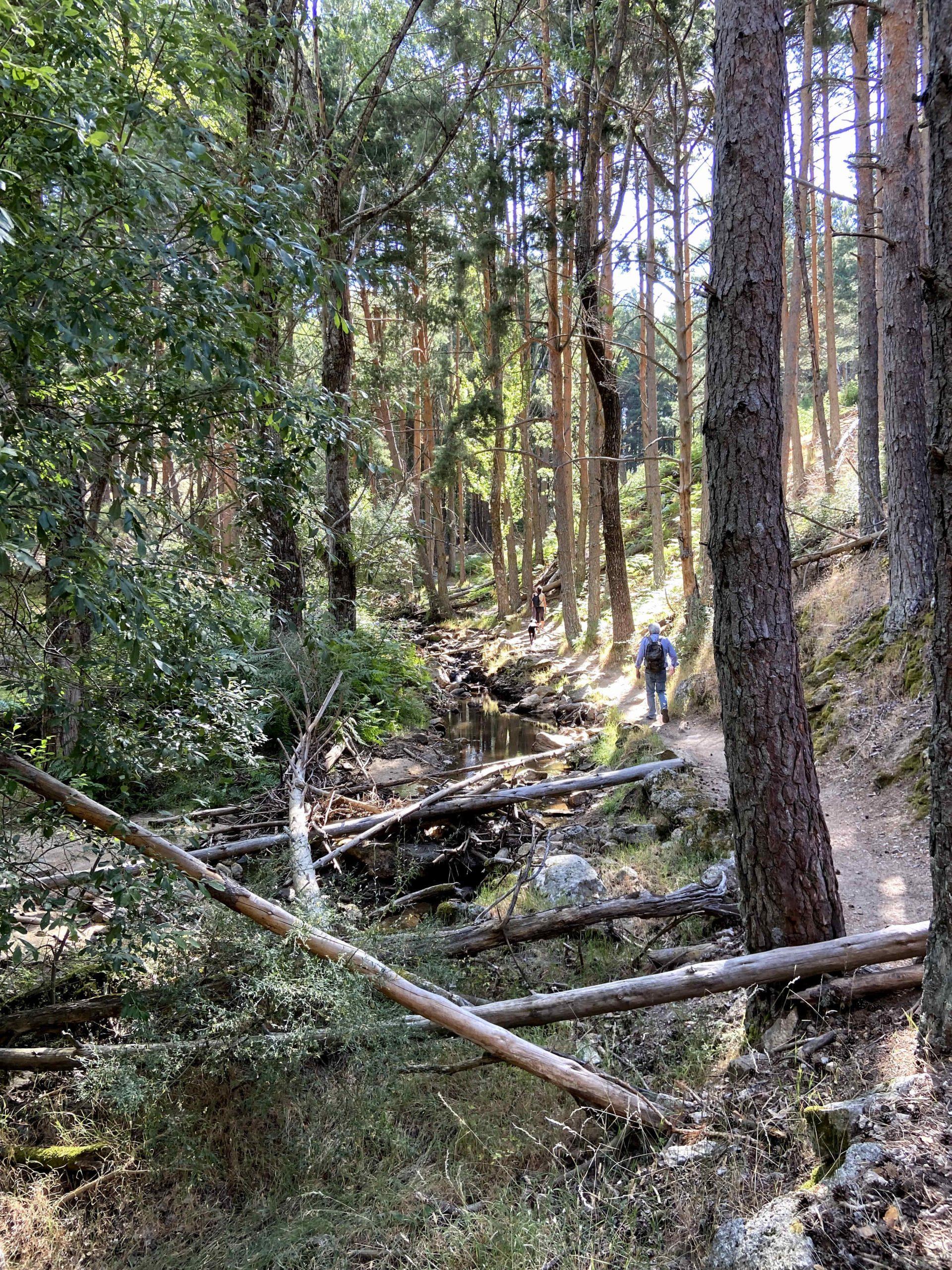 Senderismo por la Cascada del Hornillo
