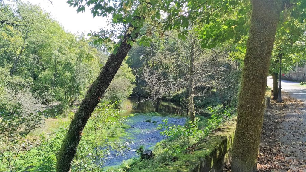río Tea en Mondariz Balneario