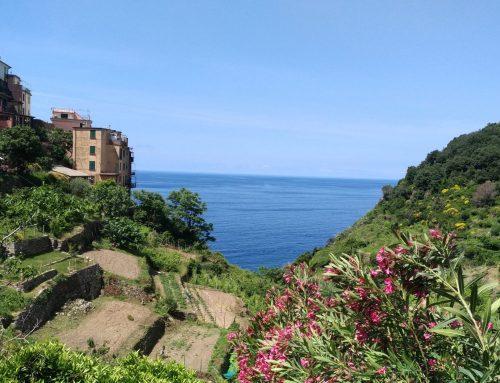 Corniglia, un balcón al mar de Liguria